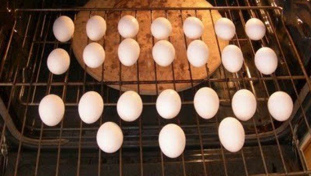 bake-eggs-oven