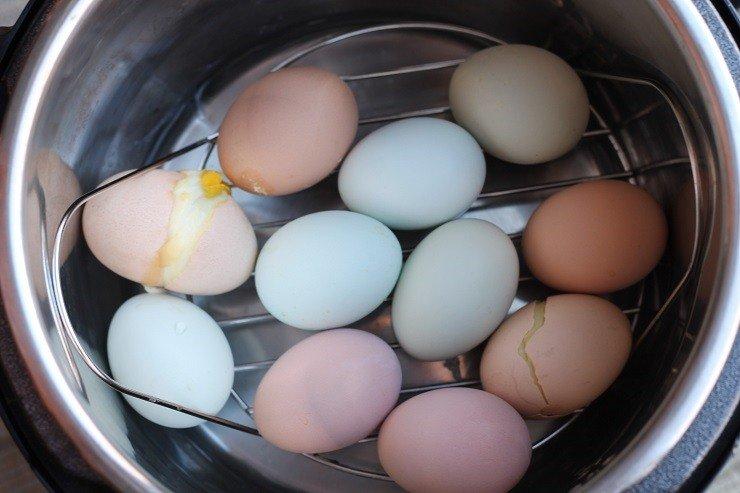 eggs-steamer-rack
